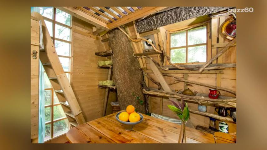 This Treehouse Airbnb Is Insanely Cool and Popular