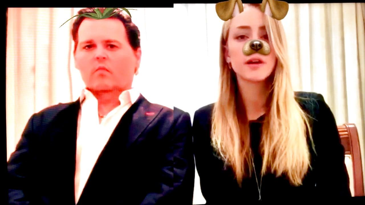 Johnny Depp and Amber Heard's Dog Apology
