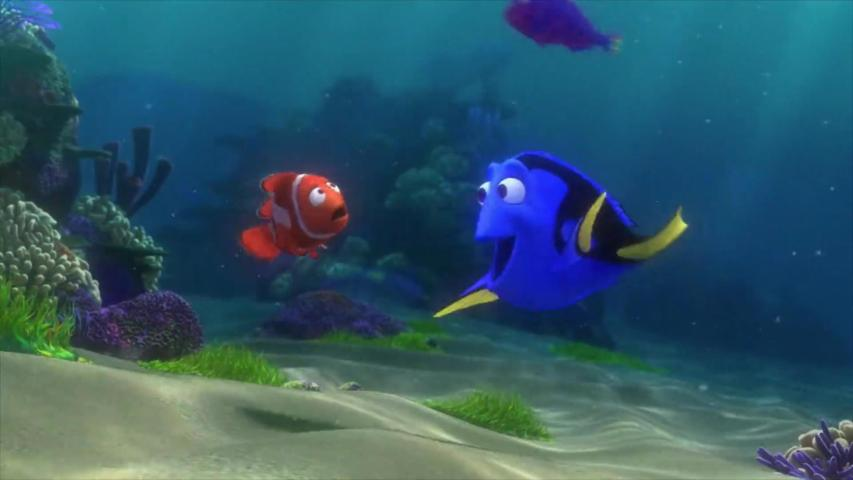 Marine Biologists Worry 'Finding Dory' Might Create an Endangered Species