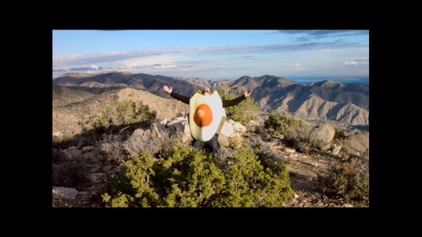 Avocado Lover Dedicates Song to His Favorite Food
