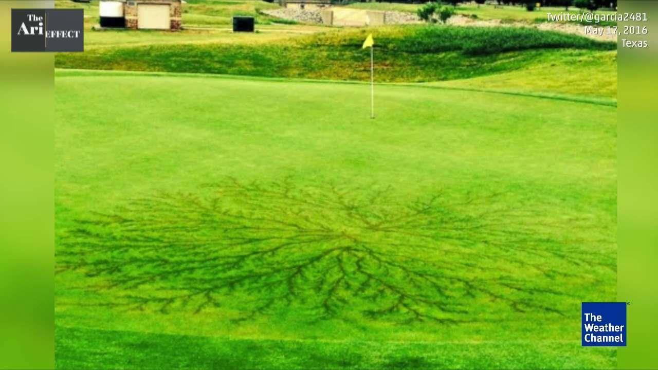 Spider Lightning Pattern on Golf Course in Texas