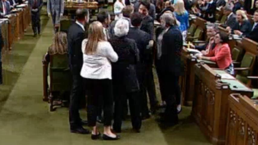 Watch: Trudeau 'manhandles' lawmaker, apologizes