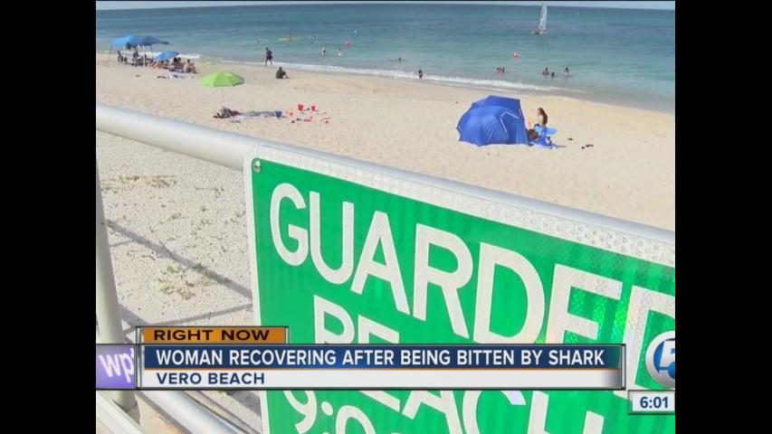 Woman recovering after being bitten by shark