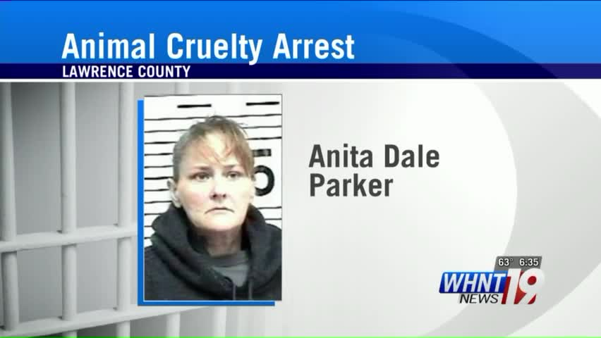Woman Accused of Killing Dog to Stage Miscarriage