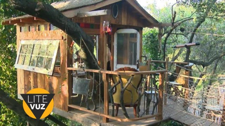 Husband builds dream treehouse for wife