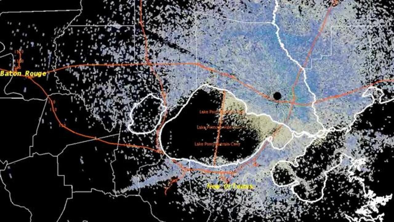 Termite Swarm Large Enough To Show Up On Weather Radar Hits New Orleans