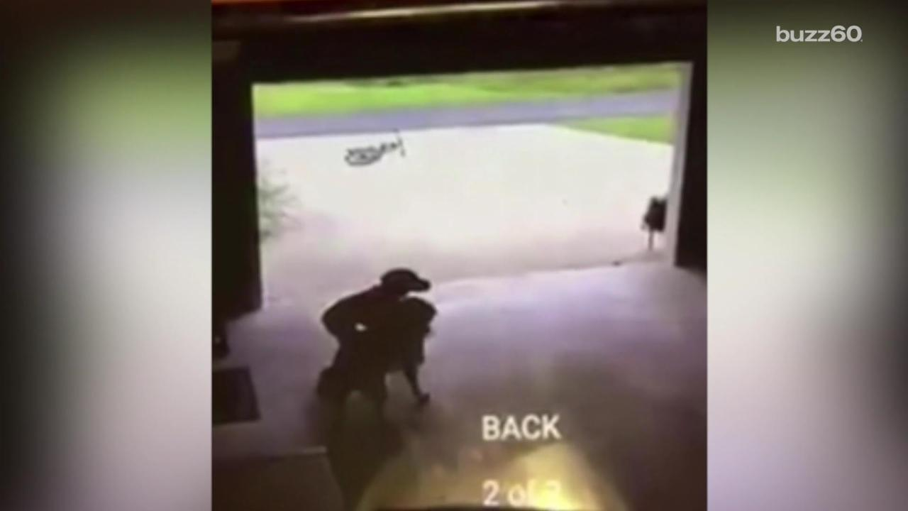 Boy Caught Sneaking Into Neighbor's Garage to Hang Out with Dog