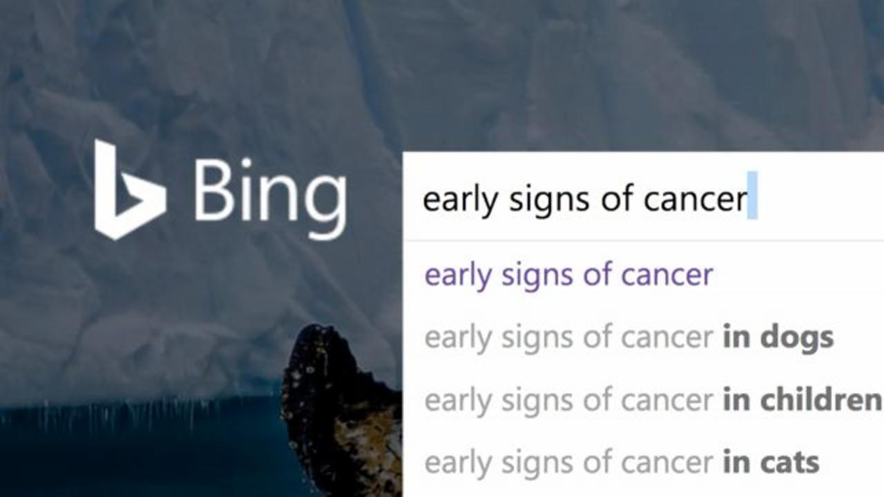 Microsoft Used Bing Search Histories to Detect Cancer