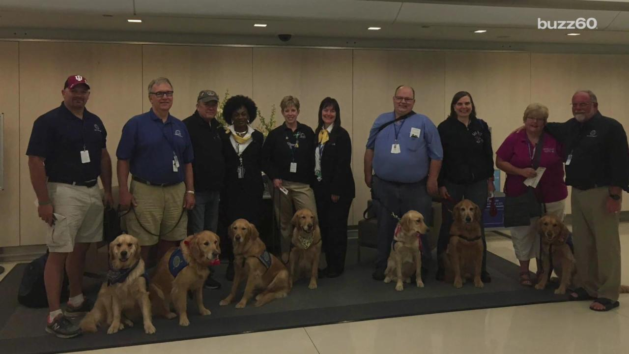 Comfort Dogs Provide Hope to Survivors of Orlando Shooting