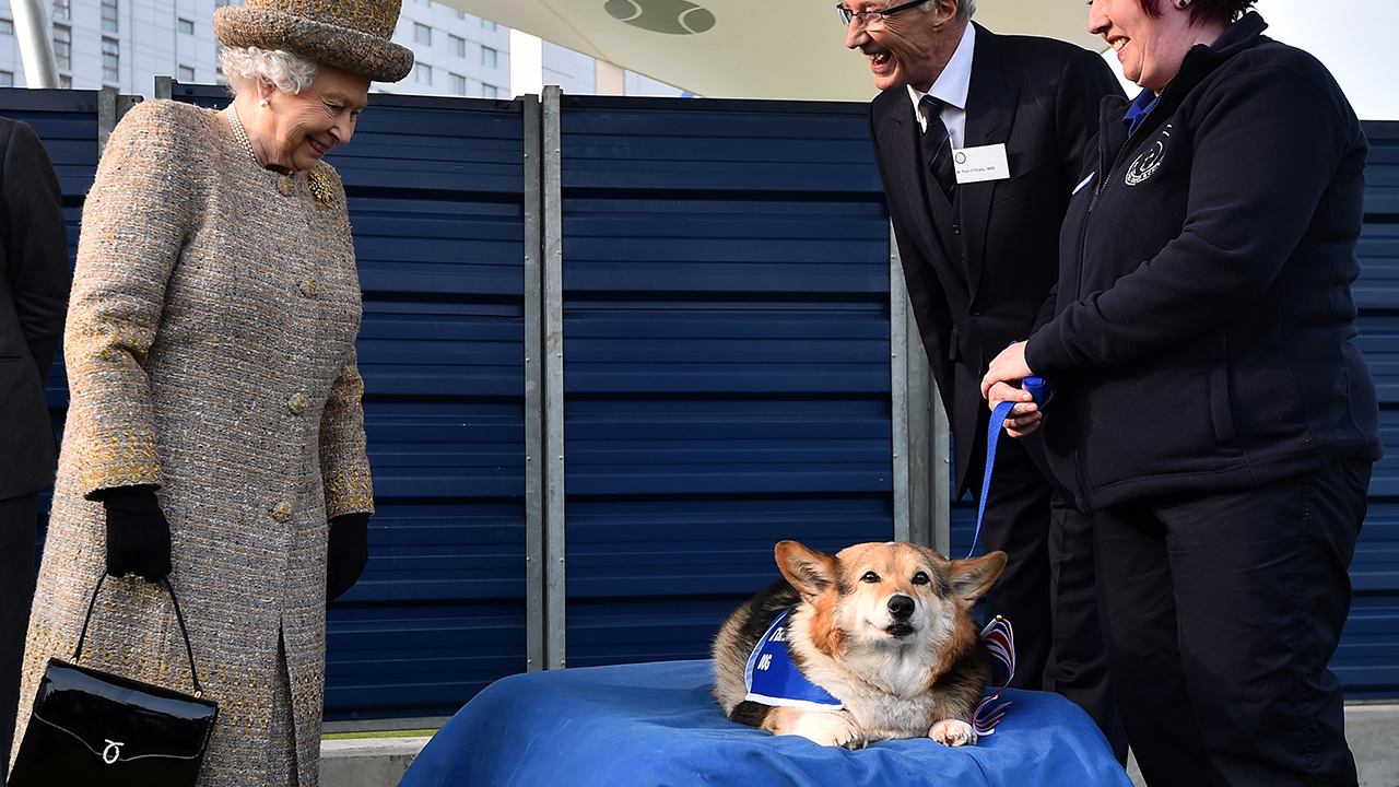 Queen Elizabeth and Her Royal Corgis