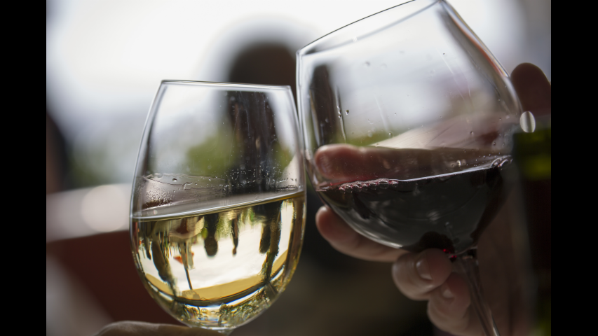 5 Reasons Wine is Good for You