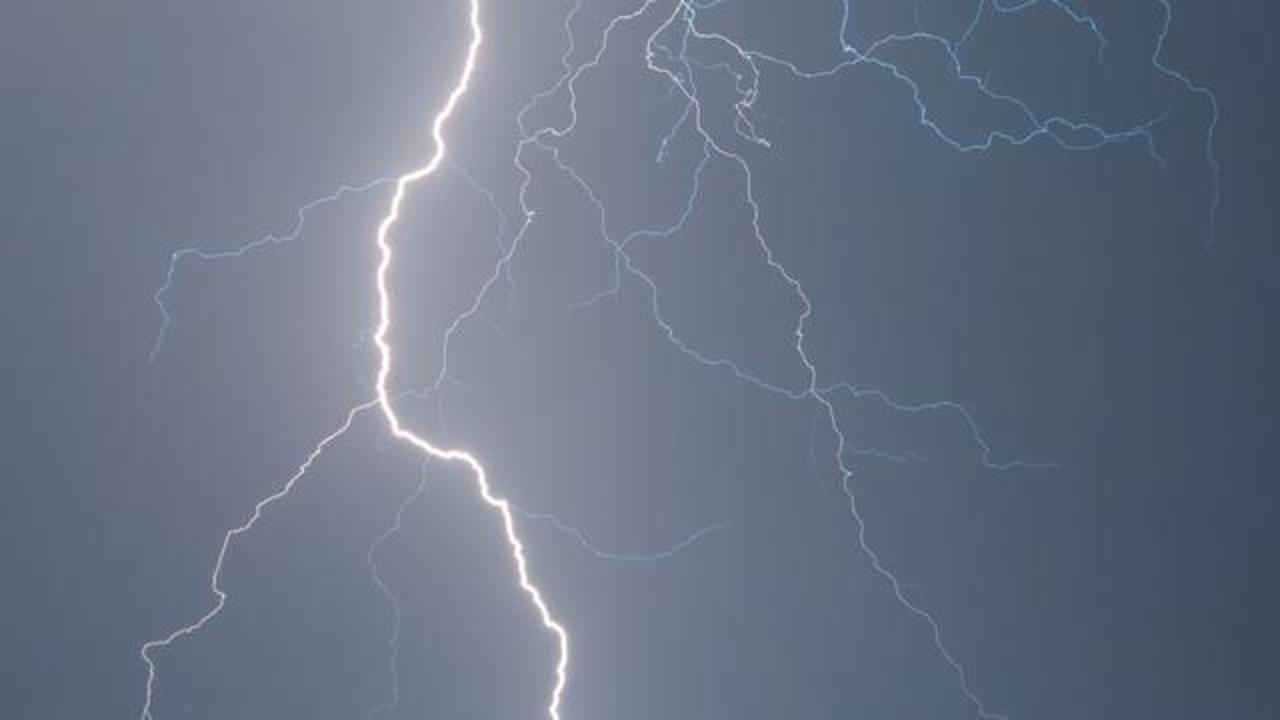 11-Year-Old Female Camper Dies After Tree Struck by Lightning Falls on Cabin