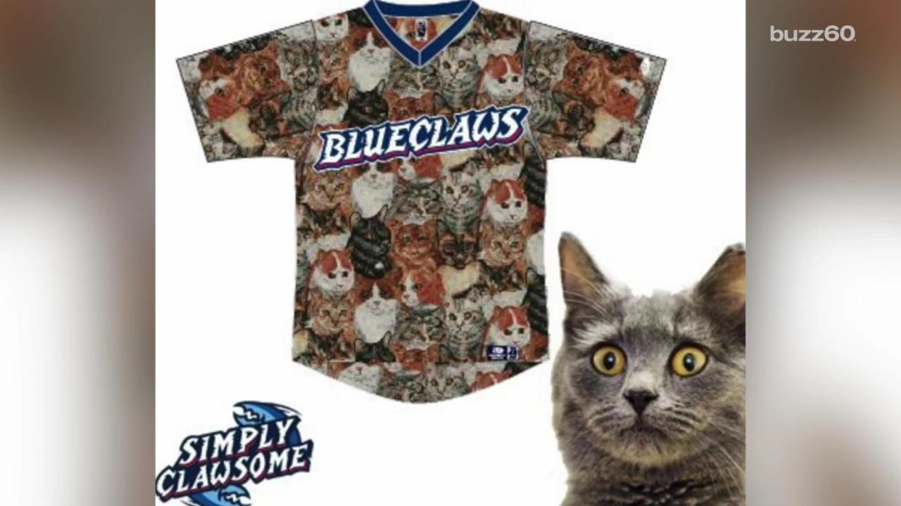 "Minor League Baseball Team Wears ""Cat Uniforms"" For a Good Cause"