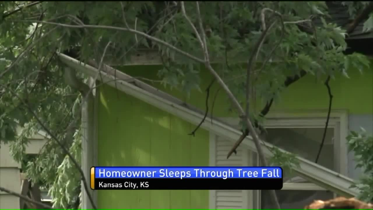 Homeowner Says She Slept Through Tree Crashing Down on Her Home