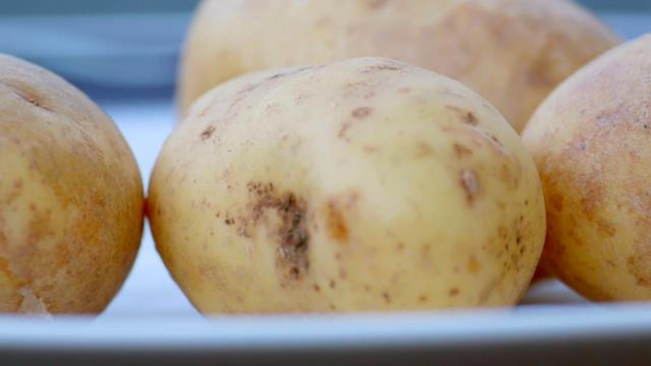 DNA Pulled From Potato Leads To Arson-Related Arrest Of Two People
