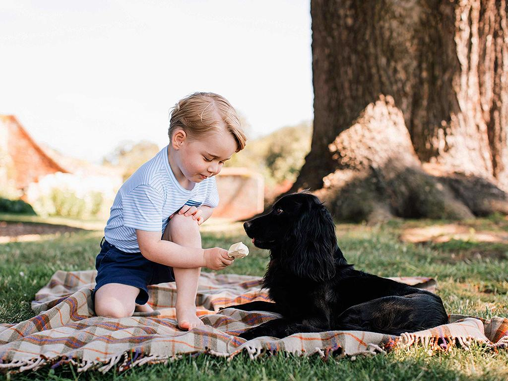 Prince George turns 3, and his latest photoshoot is adorable