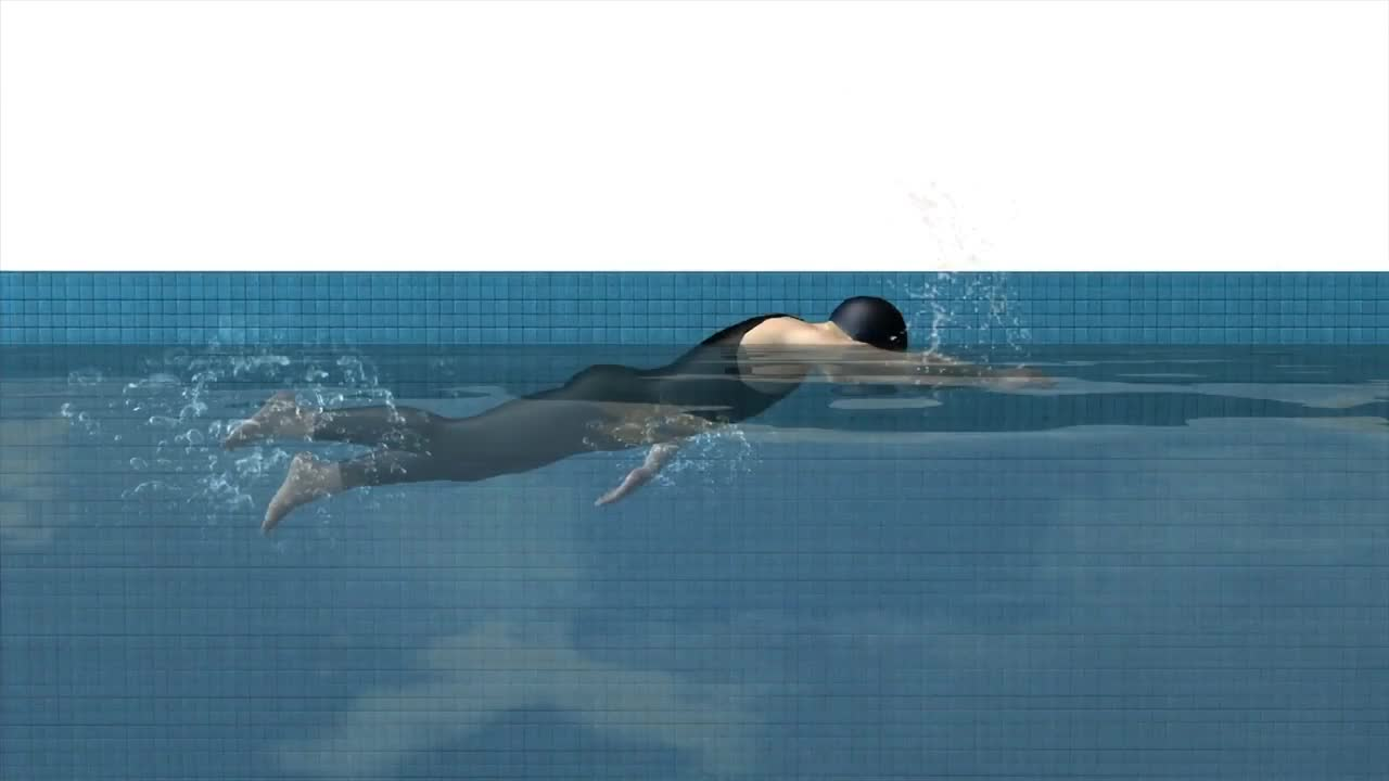 Olympics - Swimming explained