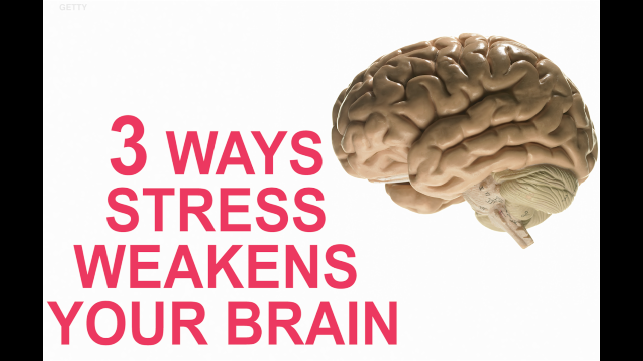 3 ways stress weakens your brain