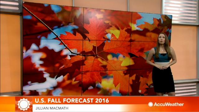 2016 US fall forecast