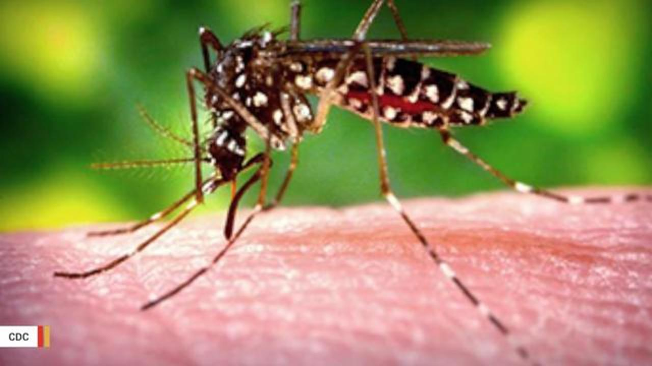 Texas Officials Announce Baby's Zika-Related Death