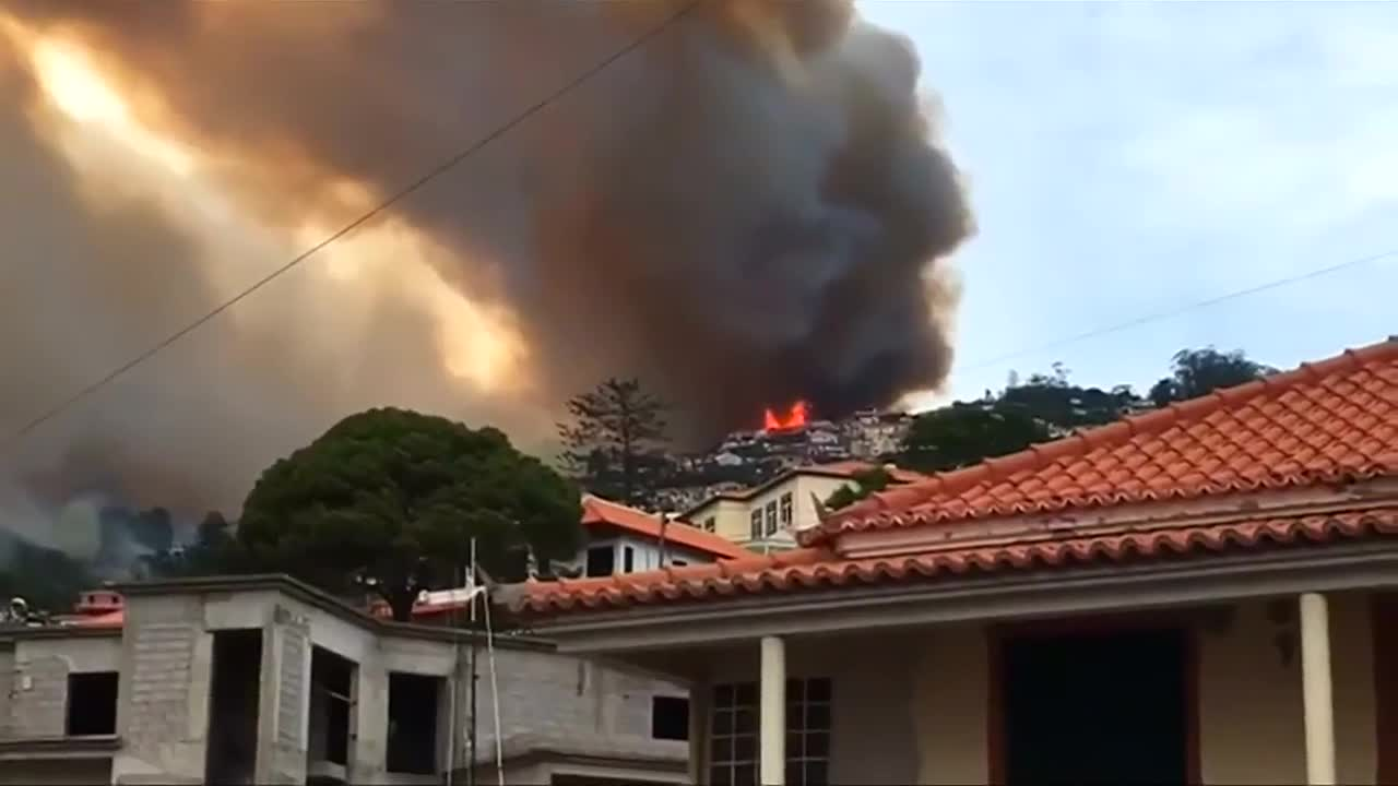 Wildfires sweep through Portugal's Madeira