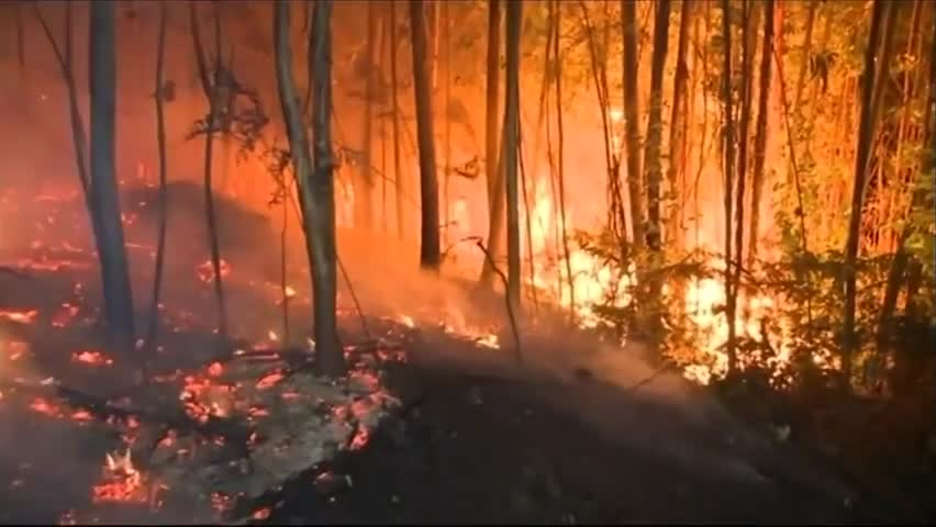 Firefighters Battle Wildfires in Spain's Galicia