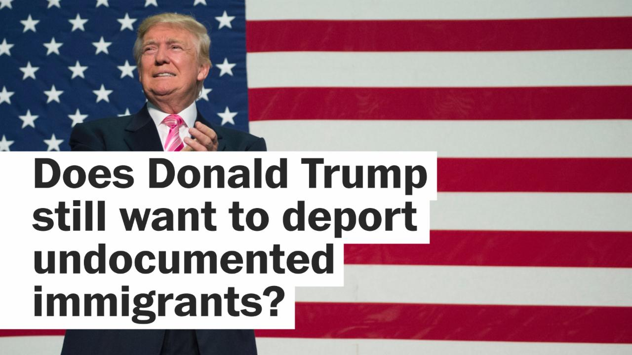 Is Trump backing down on mass deportations?