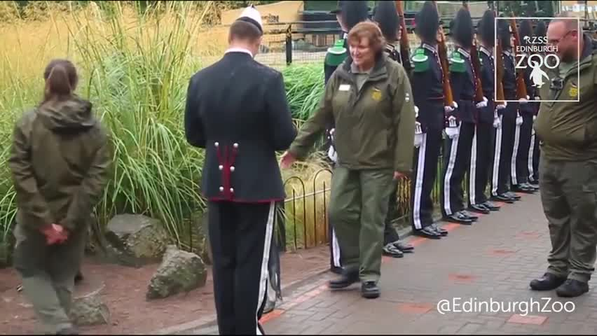 King penguin at Edinburgh Zoo made Brigadier by Norwegian Army