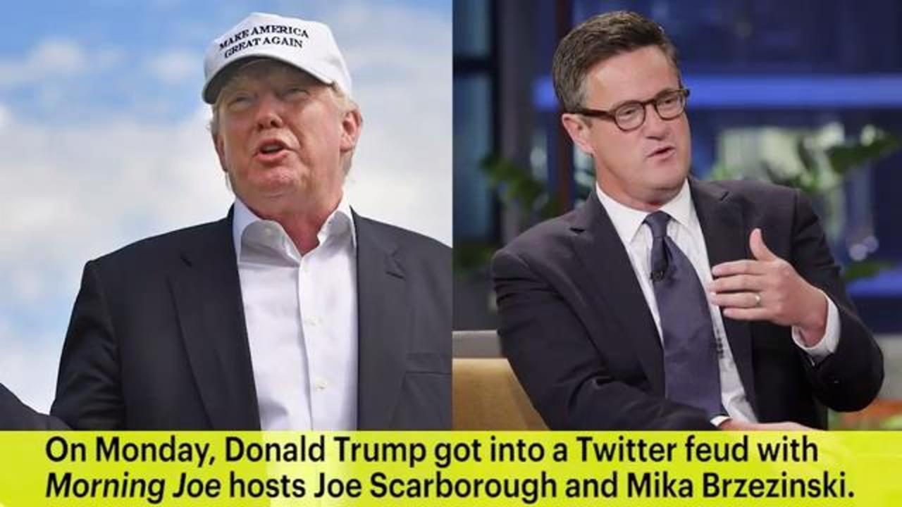 Donald Trump Slams Morning Joe Hosts as 'Two Clowns'