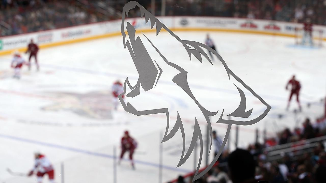 Coyotes hire Dawn Braid as NHL's first full-time female coach