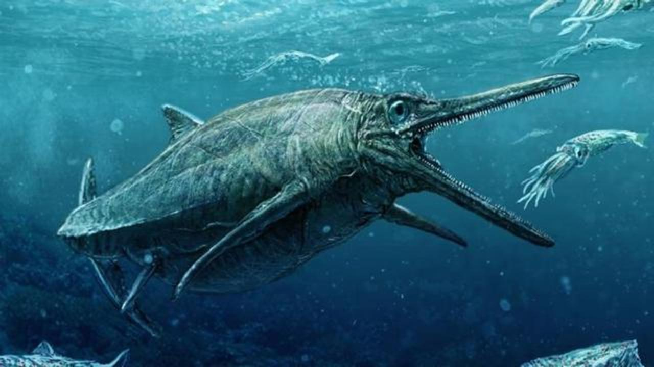 164-Million-Year-Old Fossil Of Storr Lochs Monster Revealed In Scotland
