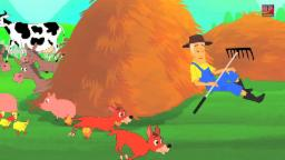 Bingo Reim für Kinder | Kinder Kinderreime | Kinderlied Compilation