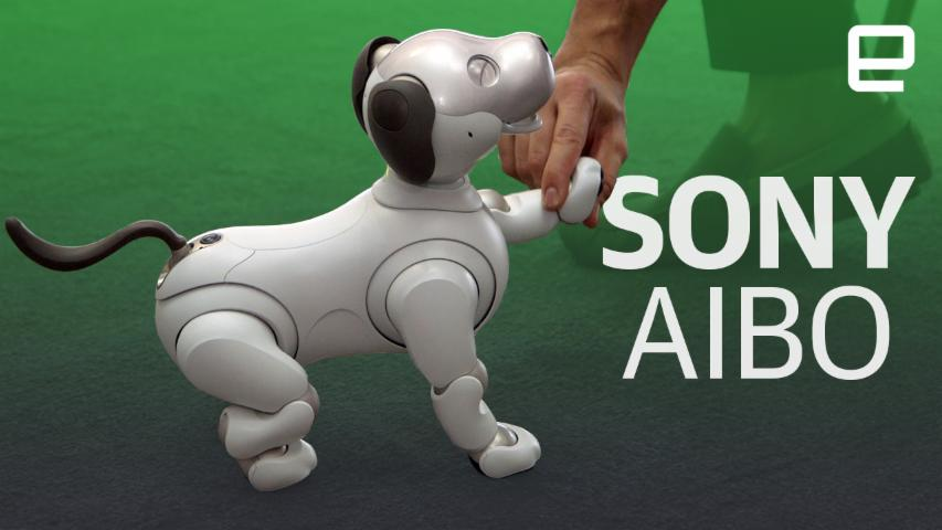 Sony's new Aibo robot first look