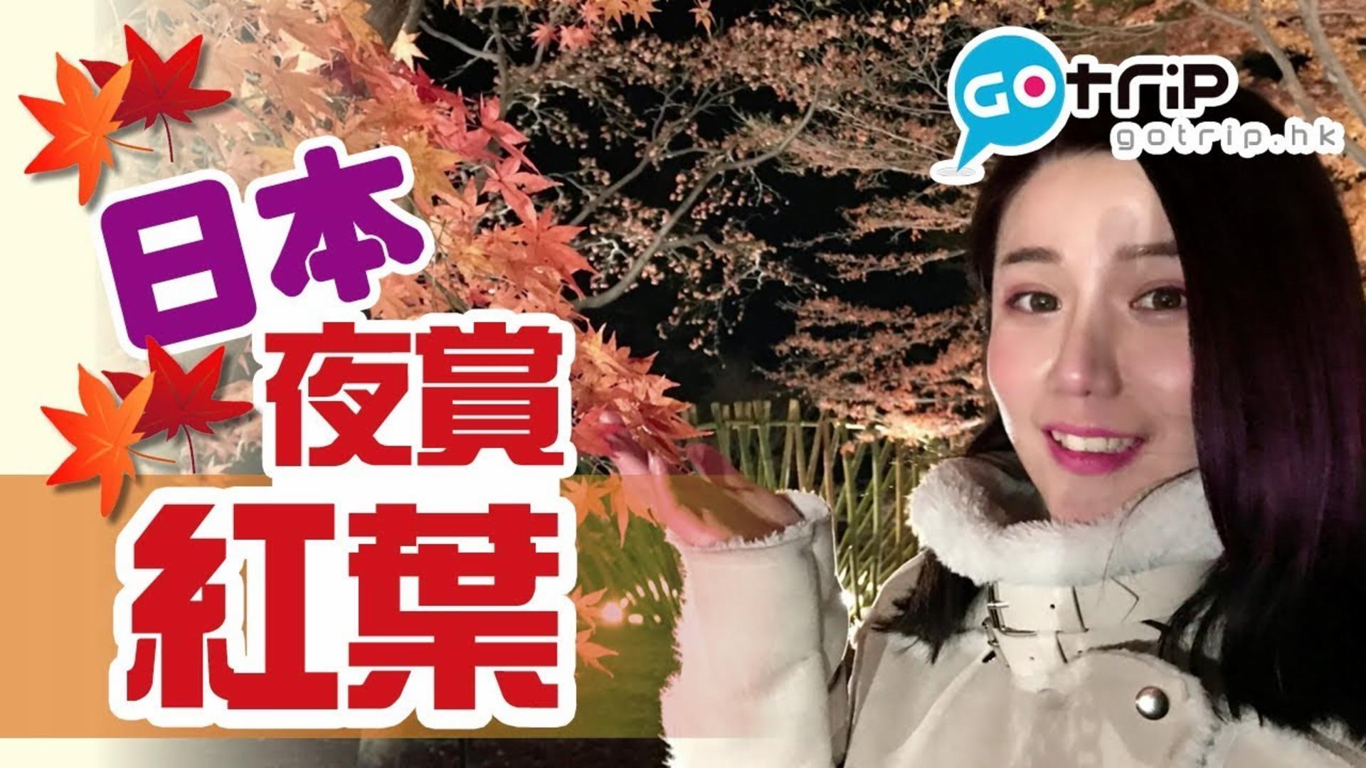 日本 森林公園賞夜楓 抓緊秋天的尾巴【學做日本人】Ep.8