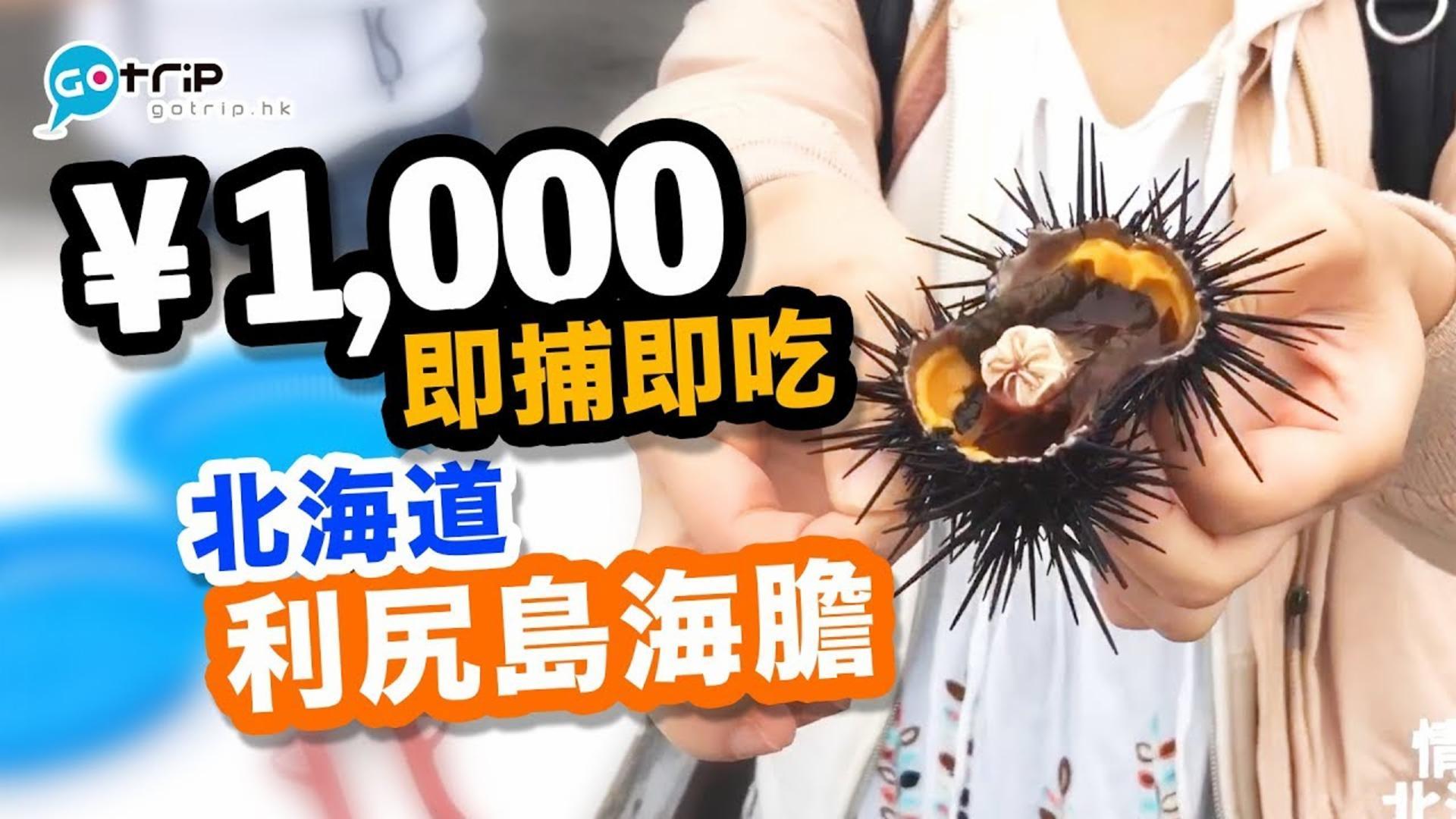 日本 北海道利尻島海膽 活捉活吃+超創意海膽雪糕【學做日本人】Ep.17