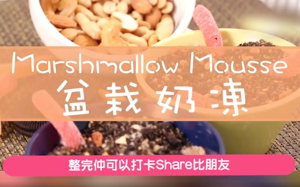盆栽Tiramisu奶凍 簡單易整 睇得又食得
