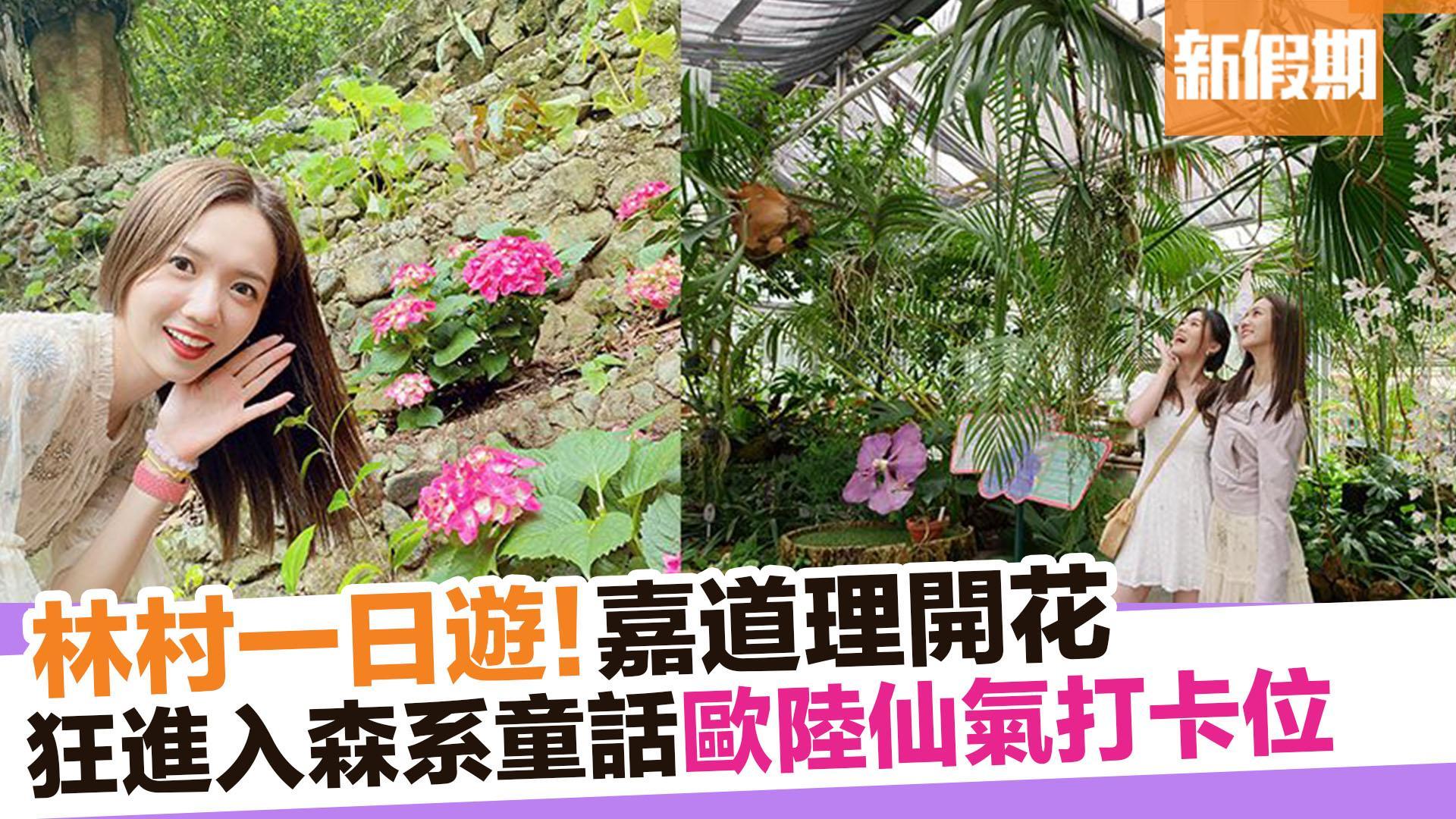【周末遊懶人包】嘉道理農場賞花+歐陸園林風美食餐廳 新假期