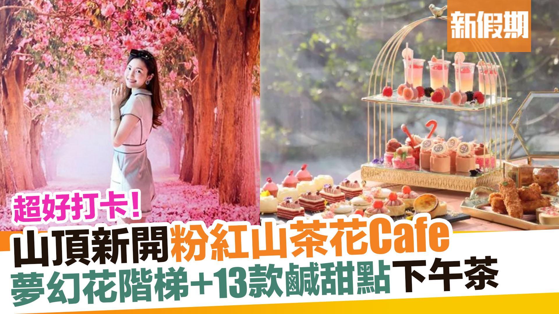 【區區搵食】山頂Camellia Garden粉紅Tea Set 少女心爆發|新假期